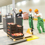 Cold Chain Monitoring in Food Logistics